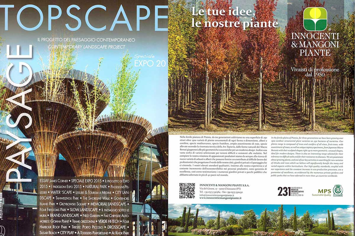 topscape20_2015.jpg